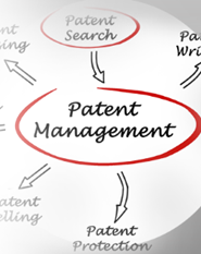 PATENT & NON PATENT LITERATURE SEARCHING